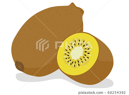 Illustration of gold kiwi fruit 68254392