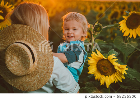 Mother with little baby son in sunflowers field during golden hour 68256500