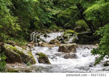 Suncheon Jogysan Mountain Creek 68271651