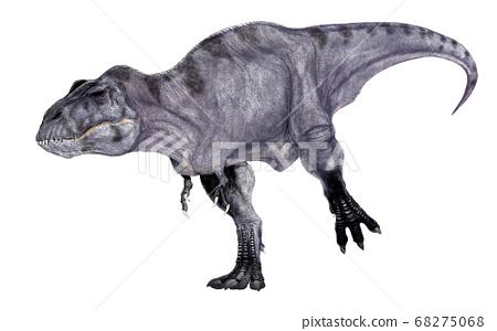 霸王龍大型食肉恐龍,生活在北美白堊紀晚期 68275068