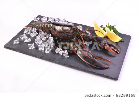 Seafood raw lobster 68299169