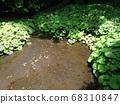 靜岡秋田河公園泉水照片 68310847