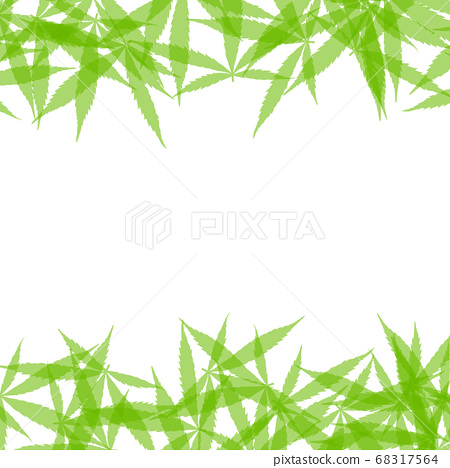 Frame formed with hemp leaves isolated on white 68317564