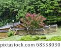 배롱나무,옥산서원,경주시,경북,한국 68338030