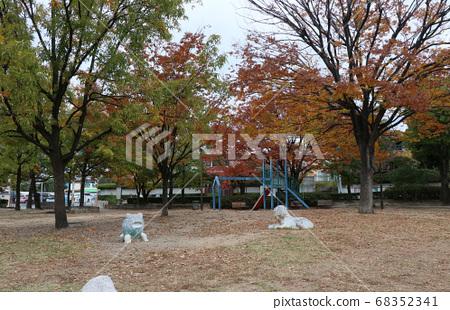 Nishinomiya City Autumn Matsugaoka Park 68352341