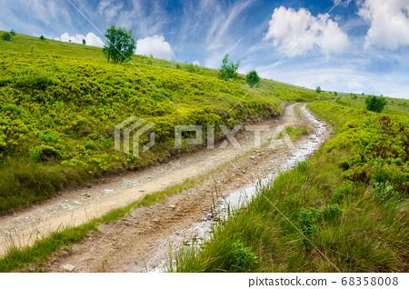 mountain road through grassy meadow. wonderful 68358008