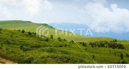 mountain road through grassy meadow. wonderful 68358009