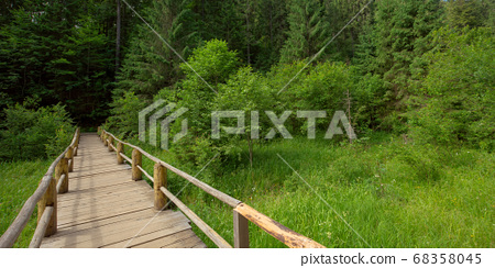 wooden bridge above the creek among the trees. 68358045