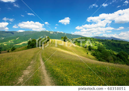 rural landscape on a summer day. dirt road in the 68358051