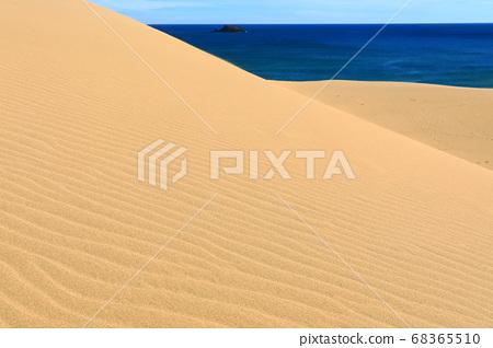[鳥取]晴朗天氣下的鳥取沙丘 68365510