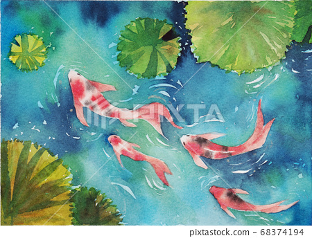 Watercolor hand painting, two koi carp fish in a pond, the symbol of good luck and prosperity. 68374194