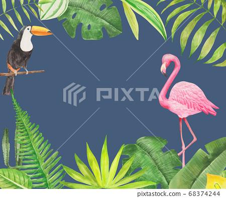 熱帶植物,tocotucan,火烈鳥水彩 68374244