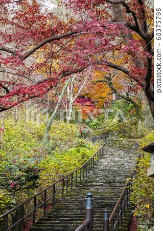 從走廊上看嵐嵐坂奈良的長谷寺 68375798