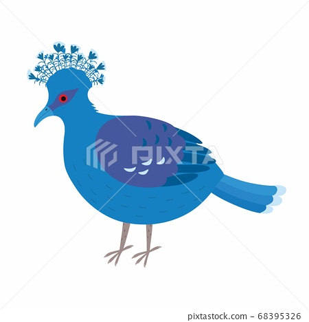Crowned dove. A blue pigeon with a fan on its head 68395326