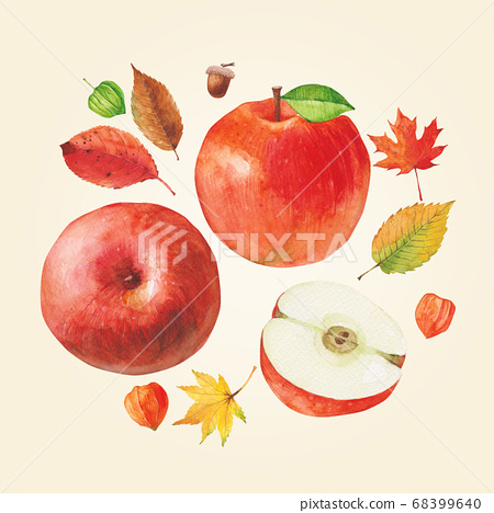 秋季植物水彩蘋果 68399640