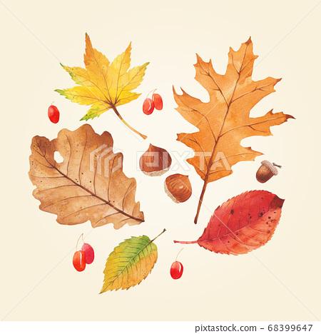 가을 식물 수채화 68399647