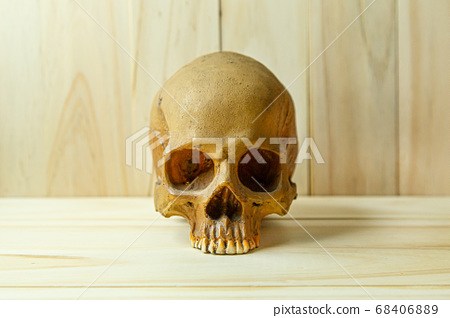 human skull on wood for body human or halloween 68406889