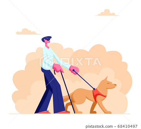 Blind Man Walking with Guide Dog along Street 68410497