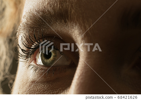 Close up of face of beautiful caucasian young woman, focus on eyes 68421626