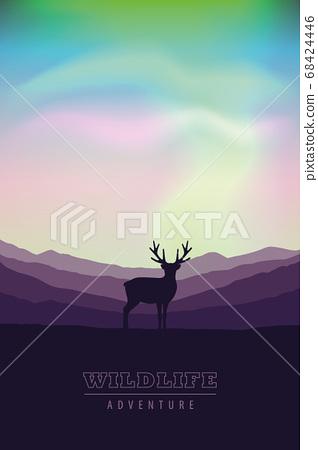 wildlife adventure elk in the wilderness at nothern lights 68424446