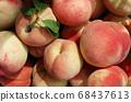 新鮮採摘的桃子特寫 68437613