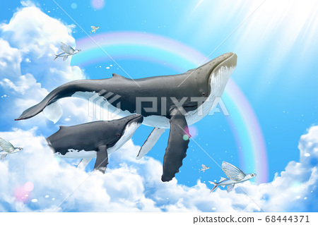 Whales swimming in blue sky 68444371
