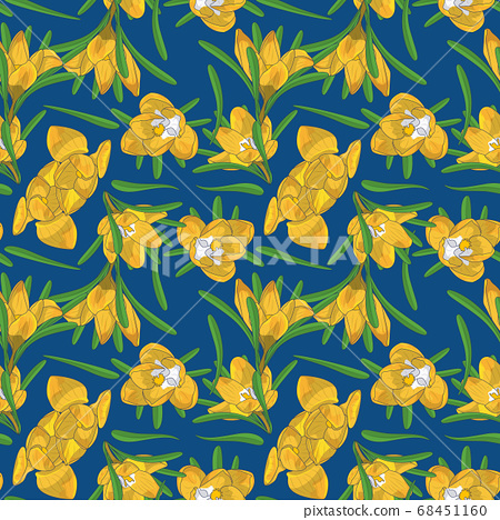 Hand drawn yellow crocus flowers seamless floral 68451160