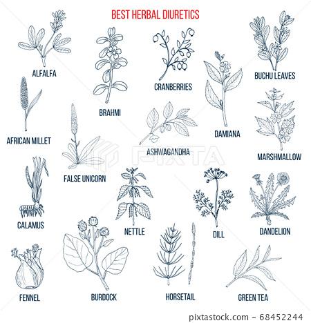 Best diuretic herbs set. 68452244