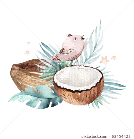 Hand drawn watercolor painting birds and Tropical palm leaves with Coconuts isolated on white background. . Nature Fruit illustration. Eco vegan organic food 68454422