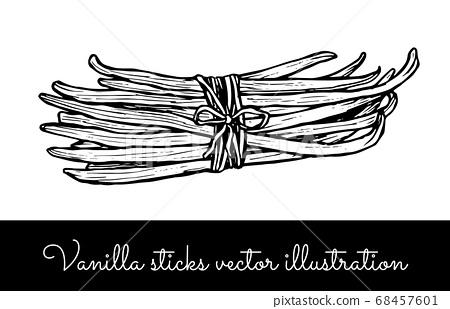 Vintage vanilla flower and vanilla sticks bunches collection 68457601