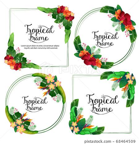 tropical frame hibiscus frangipani summer border 68464509