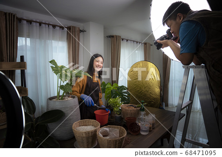 Photographer take photo for Plant a tree concept 68471095