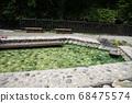 """日本擁有最大水量的""""草津溫泉""""是分佈在海拔1200 m的高山溫泉。 68475574"""