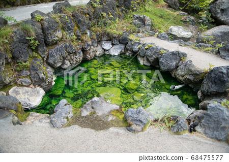 """日本拥有最大水量的""""草津温泉""""是分布在海拔1200 m的高山温泉。 68475577"""