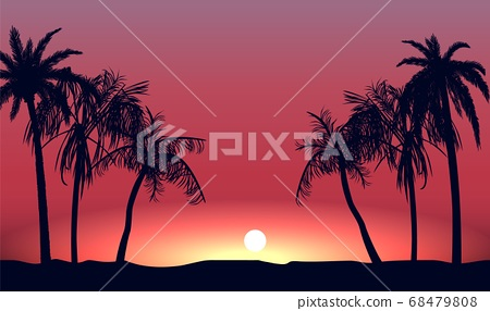 Red sunset and silhouettes of palm alley. Evening tropical beach on background setting sun. 68479808