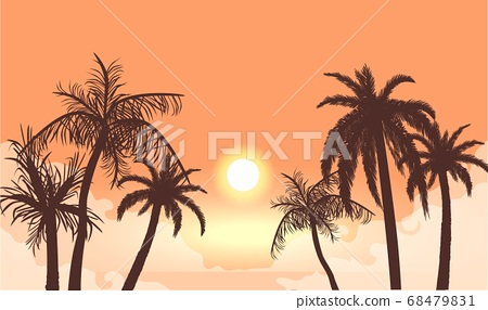 Sunset in cloudy haze silhouettes of palm trees. Tropical beach in orange fog background setting sun. 68479831
