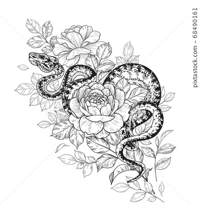 Vector Twisted Snake and Rose Flowers 68490161