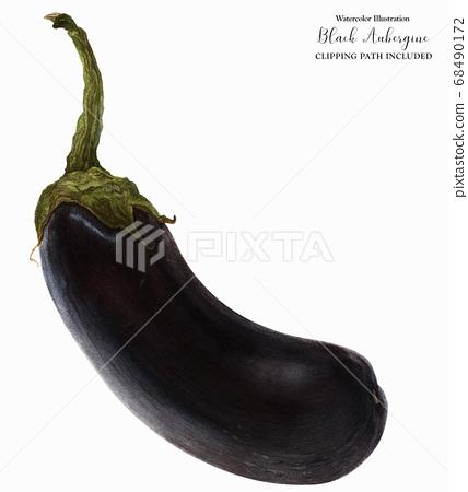 Black Aubergine Fruit 68490172