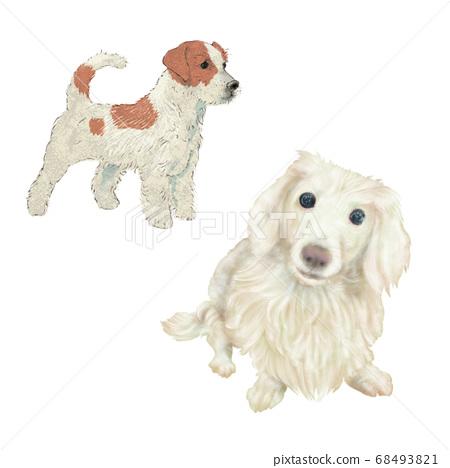 寵物的現實手繪插圖是臘腸狗和梗 68493821
