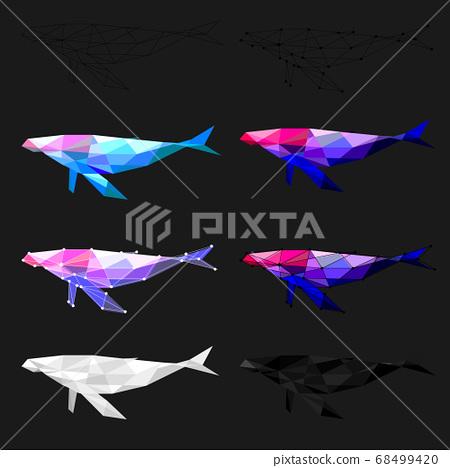 Set of Whale polygon geometric. Vector illustration. 68499420