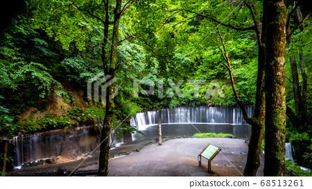 A power spot at Shiraito Falls (Karuizawa) 68513261