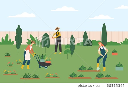 People gardening, woman and man farmers agricultural workers growing plants and flowers on lawn or backyard 68513343