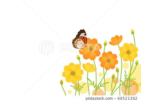 나비와 꽃 68521382