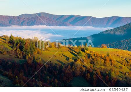 cloud inversion in mountains. carpathian autumn 68540487