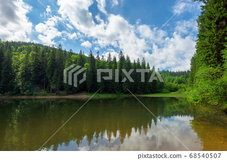 scenery around the lake in mountains. spruce 68540507