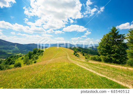 rural landscape on a summer day. dirt road in the 68540512