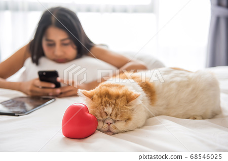 Yellow cat on bed near heart. Lovely concept. 68546025