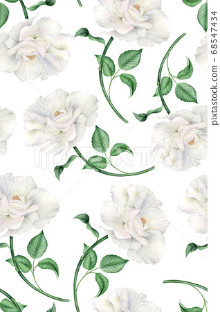 Vintage watercolor pattern with realistic white pink roses 68547434