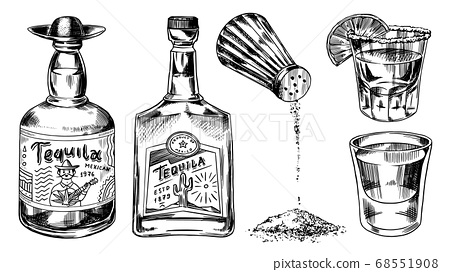 Tequila bottles and salt shaker. Glass Shots with Alcoholic Drink and Lime. Engraved hand drawn 68551908