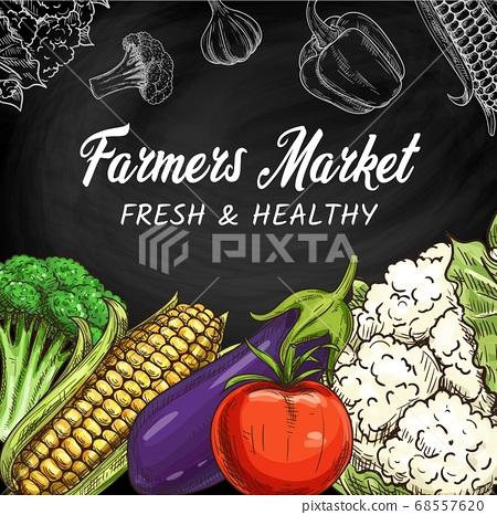 Farm vegetables, veggies sketch banner, chalkboard 68557620